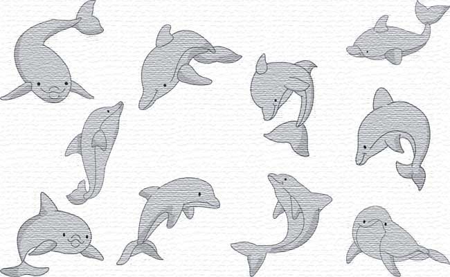 Dolphins embroidery designs